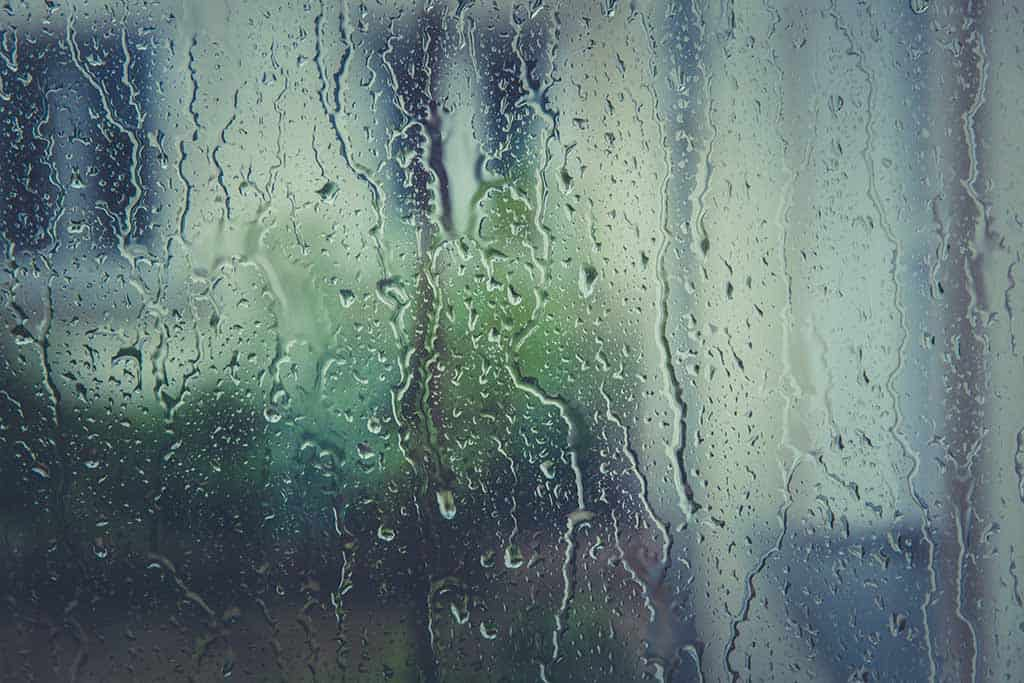 pic of rain on a window