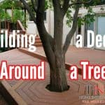 a picture of a multi tier deck with a tree in the middle of it
